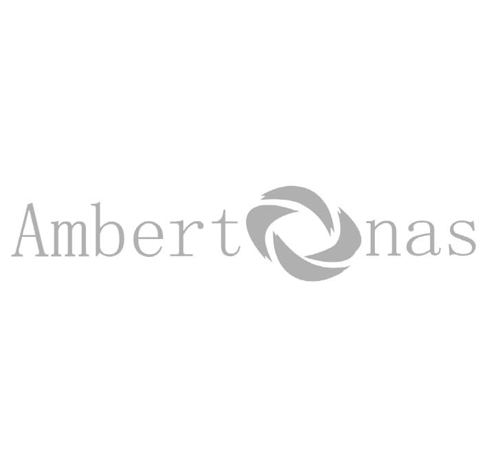 ambertonas.lt logo